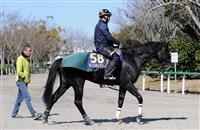 ダノンキングリーが人気 競馬の大阪杯前日オッズ
