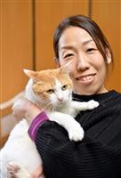 【一聞百見】猫も人も幸せな社会をめざして 獣医師・一般社団法人Happy Tabby代…