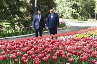 大統領の長男が上院議長に タジキスタン、世襲への布石か