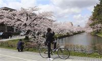 青森・弘前市長が「桜の投稿自粛を」 青森・弘前、異例の要請