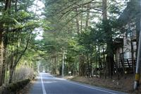 軽井沢8割減、別府など2地域で増加 観光地の人出公表