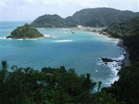 【島を歩く 日本を見る】神々しきワンダーランドへ 奄美大島(鹿児島県奄美市など)