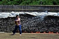 【移住のミカタ】石川県珠洲市 豊かな里山里海 力強い人々