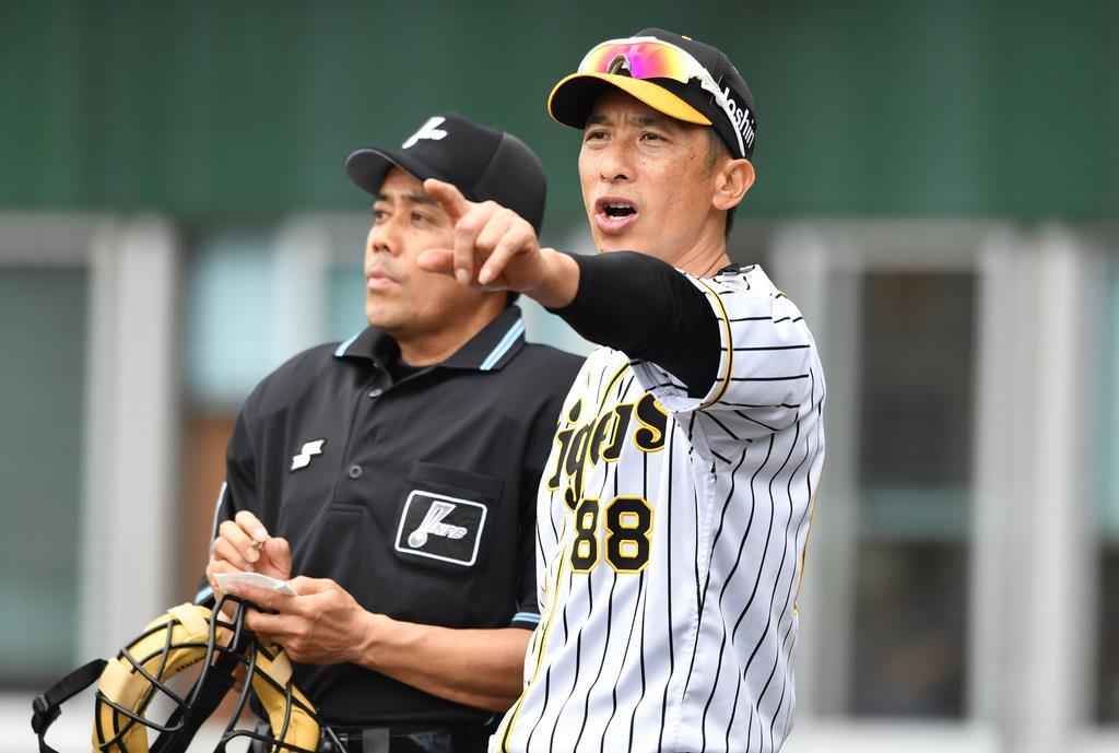 今年2月の練習試合で選手交代を告げる阪神・矢野燿大監督。異例のシーズンは知力、戦力が問われる(撮影・水島啓輔)