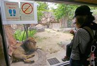 大阪の天王寺動物園が営業再開