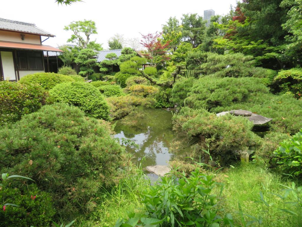広大な屋敷に設けられた松本邸の回遊式庭園