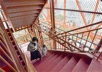 東京タワー、営業再開 展望台まで600段の外階段開放