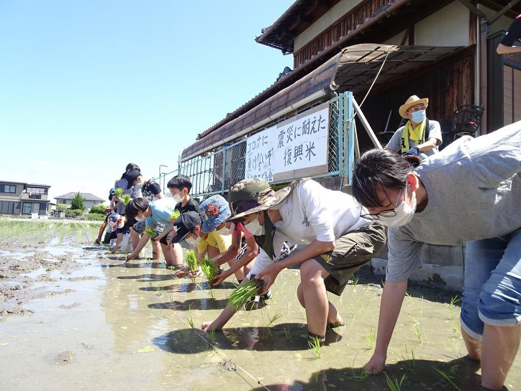 コロナに負けず…東日本大震災「復興米」児童ら田植え 大阪・富…