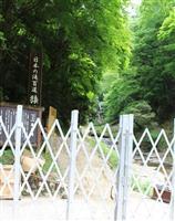 猿尾滝、7月に完全復活 兵庫・香美の名勝 落石対策完了、7年ぶり
