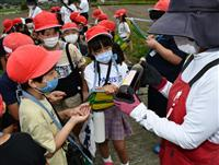 児童ら菜種の採集見学 洲本・大野小の環境学習