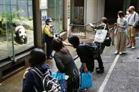 シャンシャン、お久しぶり 上野動物園4カ月ぶり再開