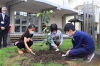 「ウィズコロナ」象徴にと堺の小学校でレモン苗木植樹