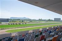 JRA、7月19日まで無観客競馬の開催を継続