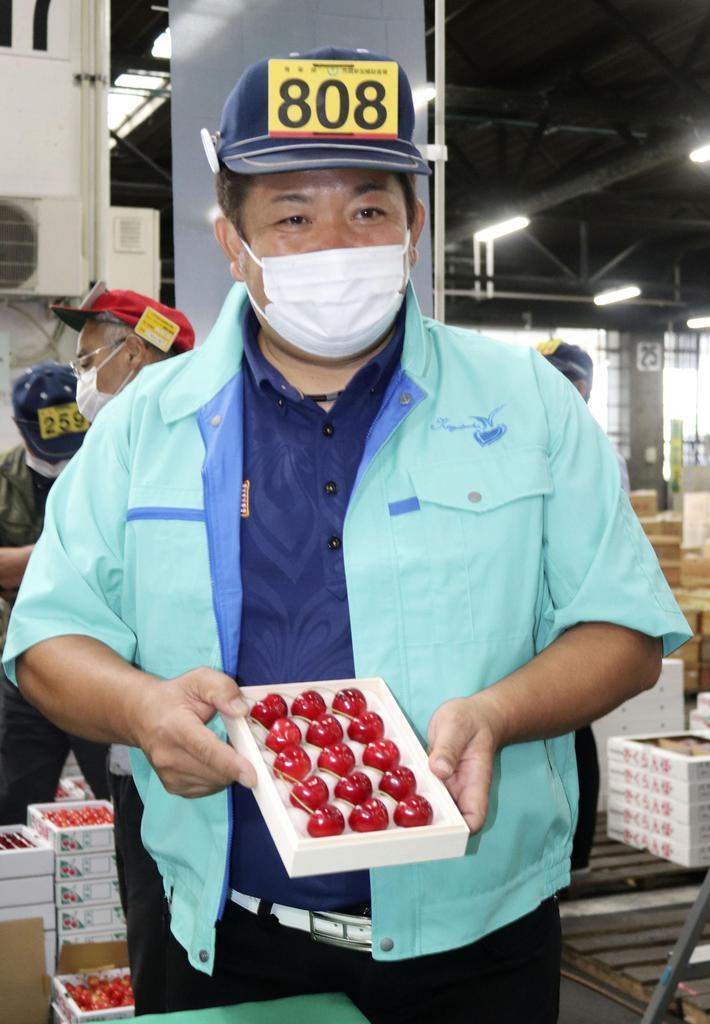 青森サクランボ1粒2万円 上級品初競りで