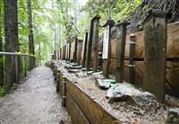 日航機墜落現場「御巣鷹の尾根」35墓標移転 昨年の台風で流失