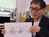 前向き思考でアレルギー改善 山梨大グループ発表 「病は気から」解明に注目