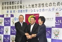 北海道蘭越町と京大、シミックの3者が共同研究 高麗人参で地域活性化