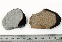 関東上空の火球の正体、千葉県で発見 「習志野隕石」と命名