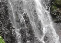 名勝・猿尾滝、上段間近で 7年ぶりファンら魅了