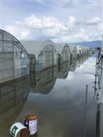 九州豪雨で農業被害深刻、離農の懸念も 農水省、農家とネットで意見交換