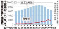 天敵不在のカミツキガメ、千葉県内に推定6500匹