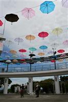 10色のビニール傘で演出 明石海峡公園でイベント