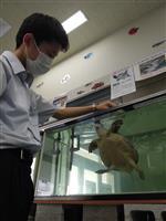 「部室」に年間2千人、高校生が運営する水族館の見所