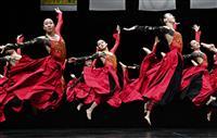 コロナ禍の不安、恐怖もダンスで 高校ダンス部選手権