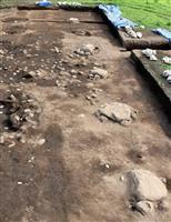 群馬 上野国分尼寺跡調査、金堂の規模など判明