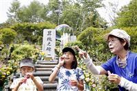 慰霊登山、例年の半数ほどに 日航機墜落事故から35年