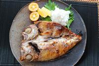 【料理と酒】錦織圭も大好き 島根のノドグロ