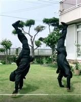 忍法「コロナ終息の術」海外でも人気 佐賀の観光施設などが動画