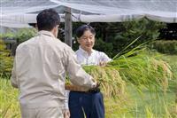 天皇陛下、皇居でお稲刈り 豪雨、コロナ禍でも「各地で収穫無事に」