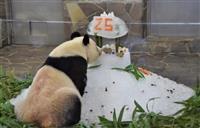 神戸で最後のお祝い ジャイアントパンダのタンタン25歳に