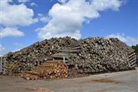 在庫増、価格下落 木材業に影 新設住宅着工戸数が低迷 コロナ禍、廃業の恐れ
