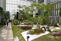 日本人の美意識感じて 奇跡の星の植物館で特別展