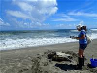 【知ってる?!】海洋プラスチック(4)環境保護をビジネスに