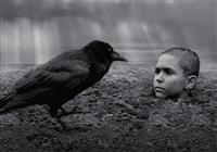 """ホラーより""""怖い""""映画「異端の鳥」 あなたは最後まで見続けられるか?"""