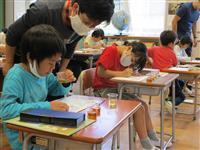 静岡茶の魅力次世代に 「おいしい入れ方教室」で児童学ぶ