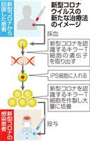 iPS使いコロナ治療法開発へ 京大発ベンチャーと藤田医科大