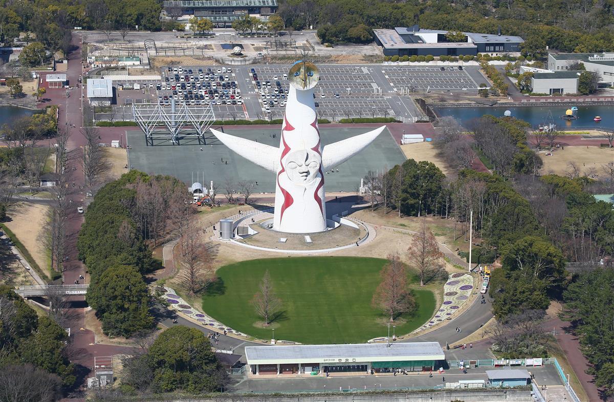 倒木に当たり40代男性けが 大阪・万博記念公園