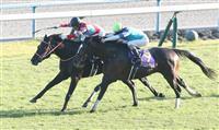 コントレイルが無敗で3冠 競馬の菊花賞