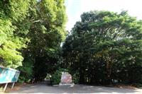 【100年の森 明治神宮物語】継承(5)未来へ歩む「木を植える人々」
