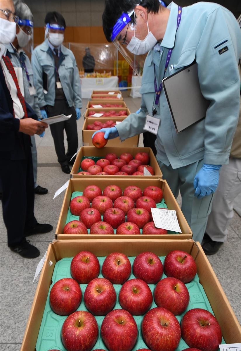 群馬県でりんご品評会「過去最高の甘いリンゴ」