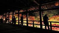 【動画】通天橋から「赤の世界」 東福寺が紅葉ライトアップ 初の一般公開