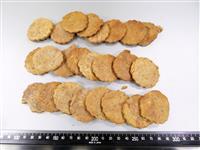 大麻所持疑いで男逮捕、クッキー60枚押収 静岡