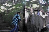 「鬼滅の刃」の岩が話題に 京丹後市の神谷神社