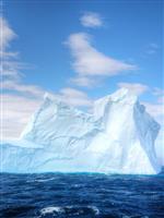全長150km超の巨大氷山が南大西洋の島に衝突? 生態系への影響で懸念されていること