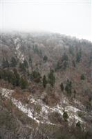 【動画】一気に冷え込み 金剛山初冠雪