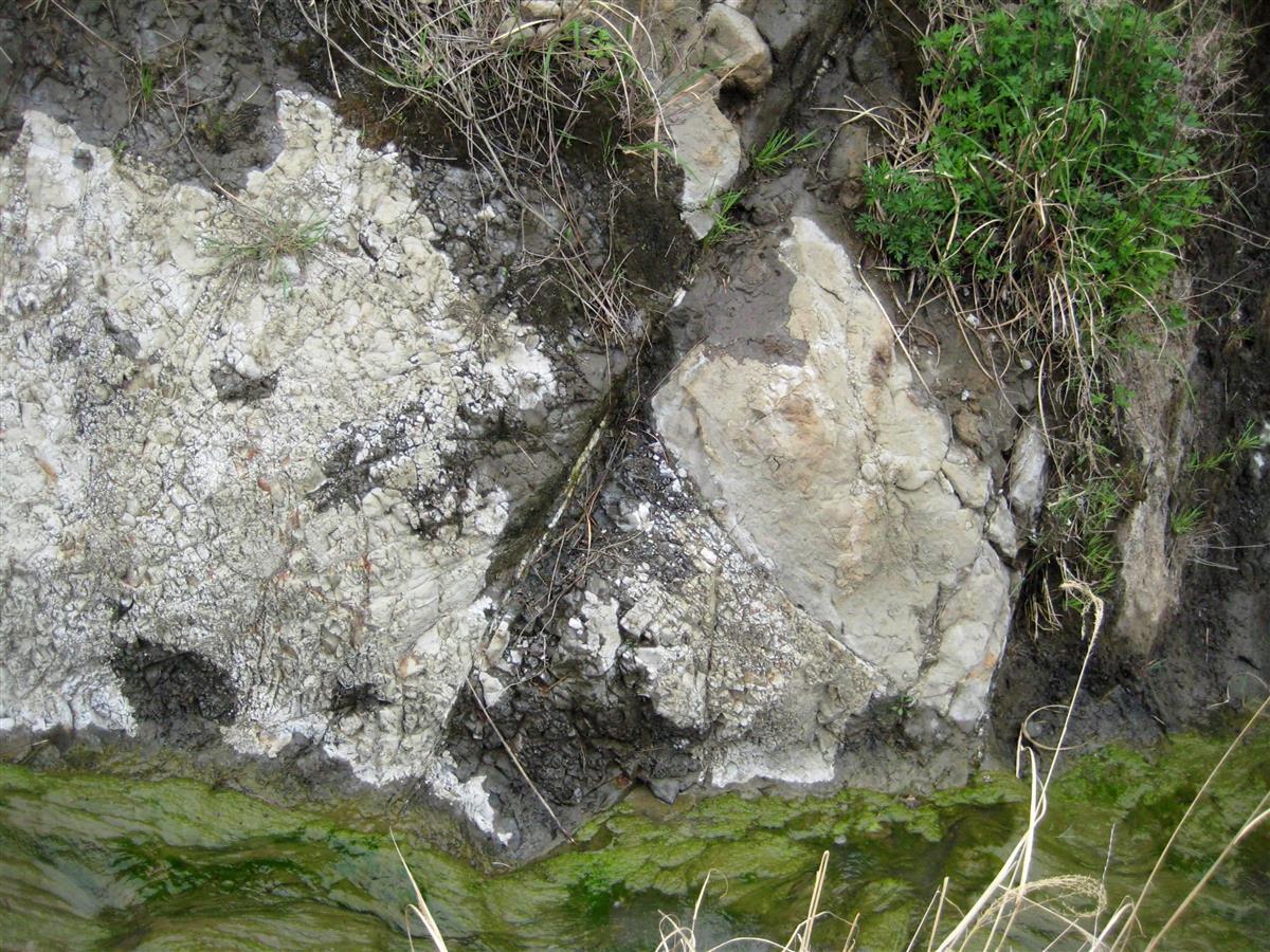新鉱物「房総石」正式認定 千葉県内2例目